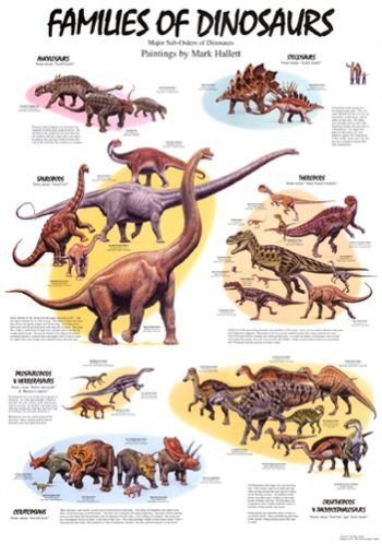 Awesome Poster Families Of Dinosaurs Dinosaur Posters Dinosaur Pictures Dinosaur