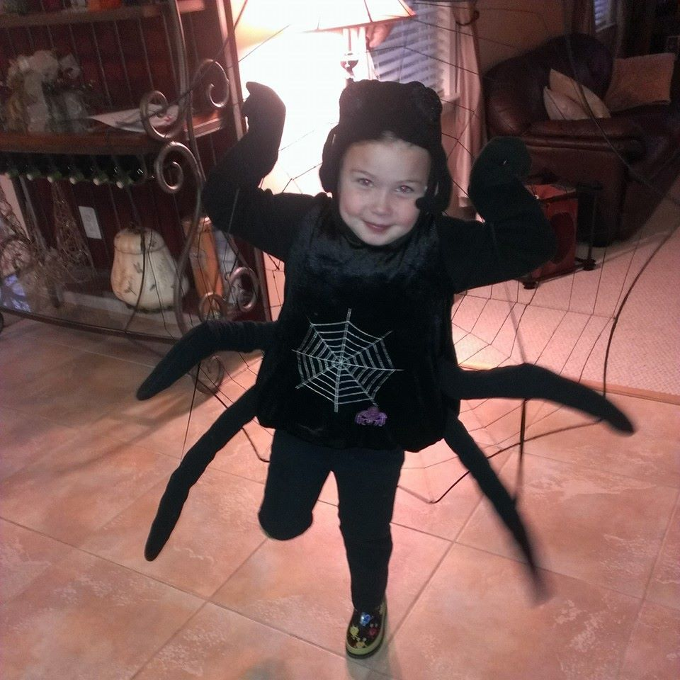 Spooky Spider in Hagerstown from Katie Mae Cloud