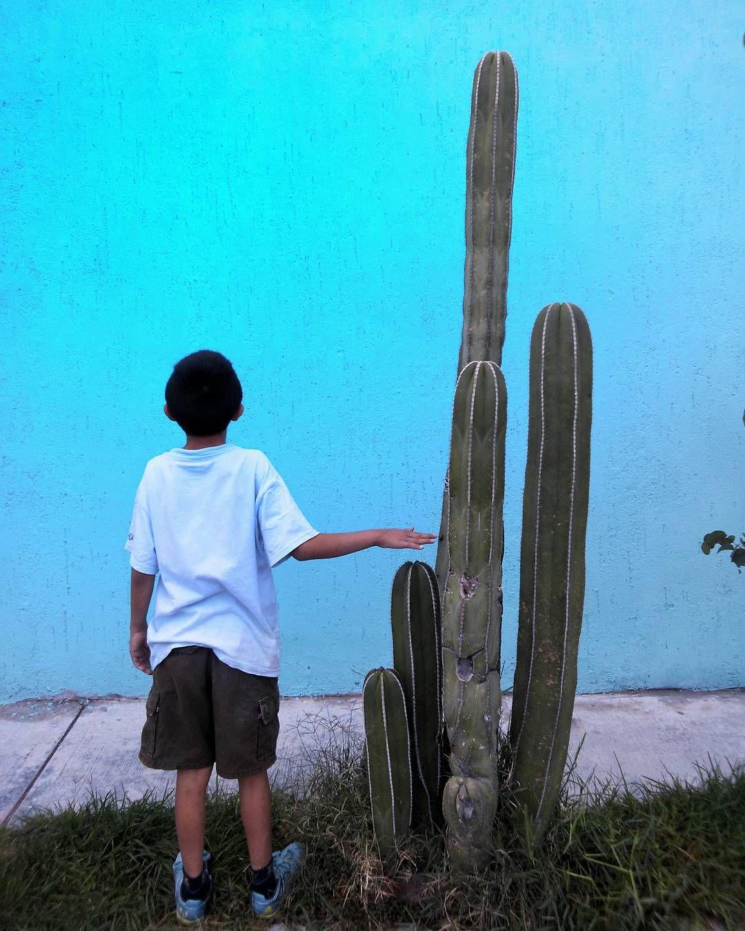 "adrian22lara: """"PEQUEÑO"" #igers #mexigers #contraste"""