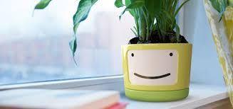 Resultado de imagem para comprar vasos para plantas design