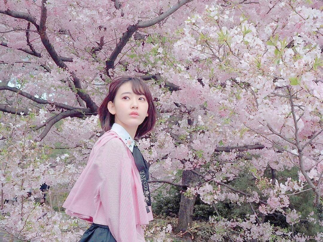 Sakura Miyawaki Bunga Sakura Jepang Selebritas