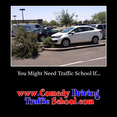 You might need Traffic School if… #comedy #onlinedefensivedriving #defensivedriving  #defensivedrivingflorida  #safedriving  #safedrivingflorida  #trafficschool  #trafficschoolflorida  #followme  http://www.comedydrivingtrafficschool.com/
