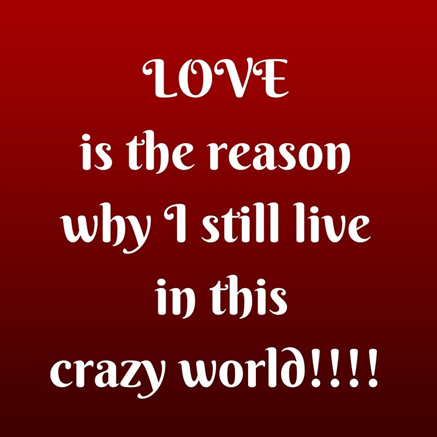 LOVE is the reason why I still live in this crazy world
