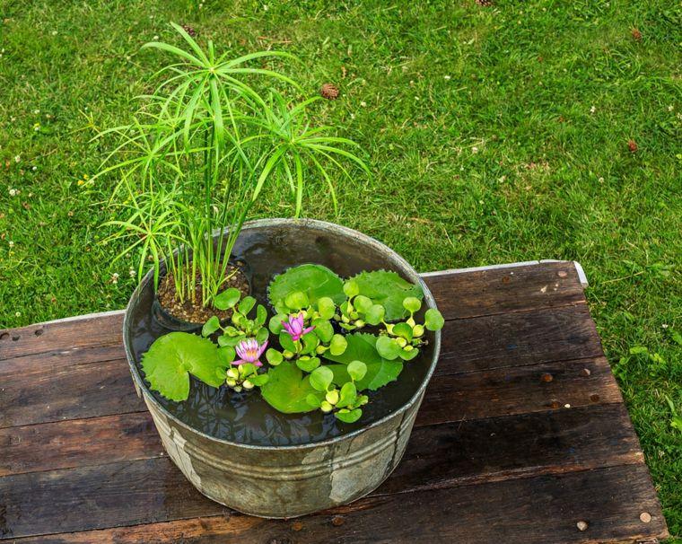 una fuente decorativa con plantas de agua y algunos pececillos en su patio no slo se