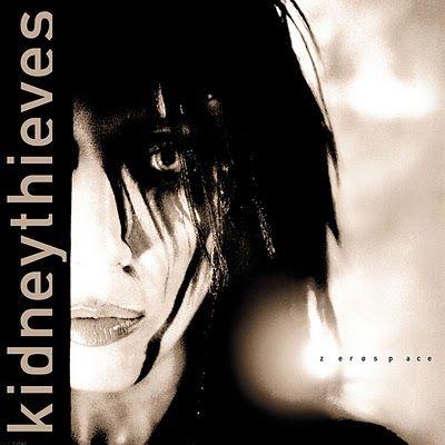 Kidneythieves - Zerospace