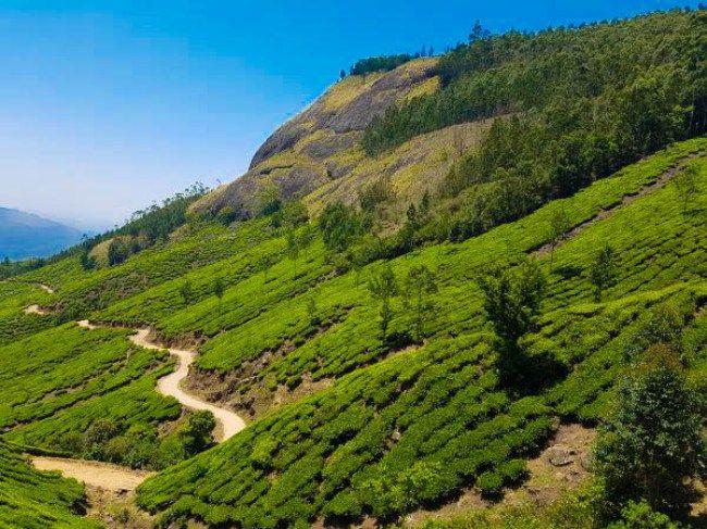 India, cosa fare in Kerala in 14 giorni