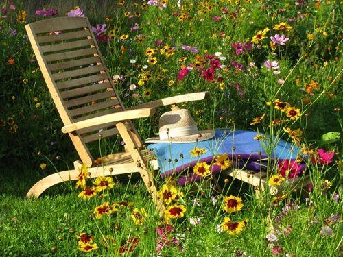 Liegestuhl Blumenwiese Schwedtke