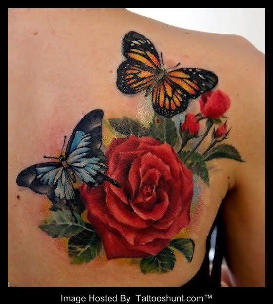 rose tattoo on shoulder beautiful colored butterflies and 3d red rose tattoo on back shoulder. Black Bedroom Furniture Sets. Home Design Ideas