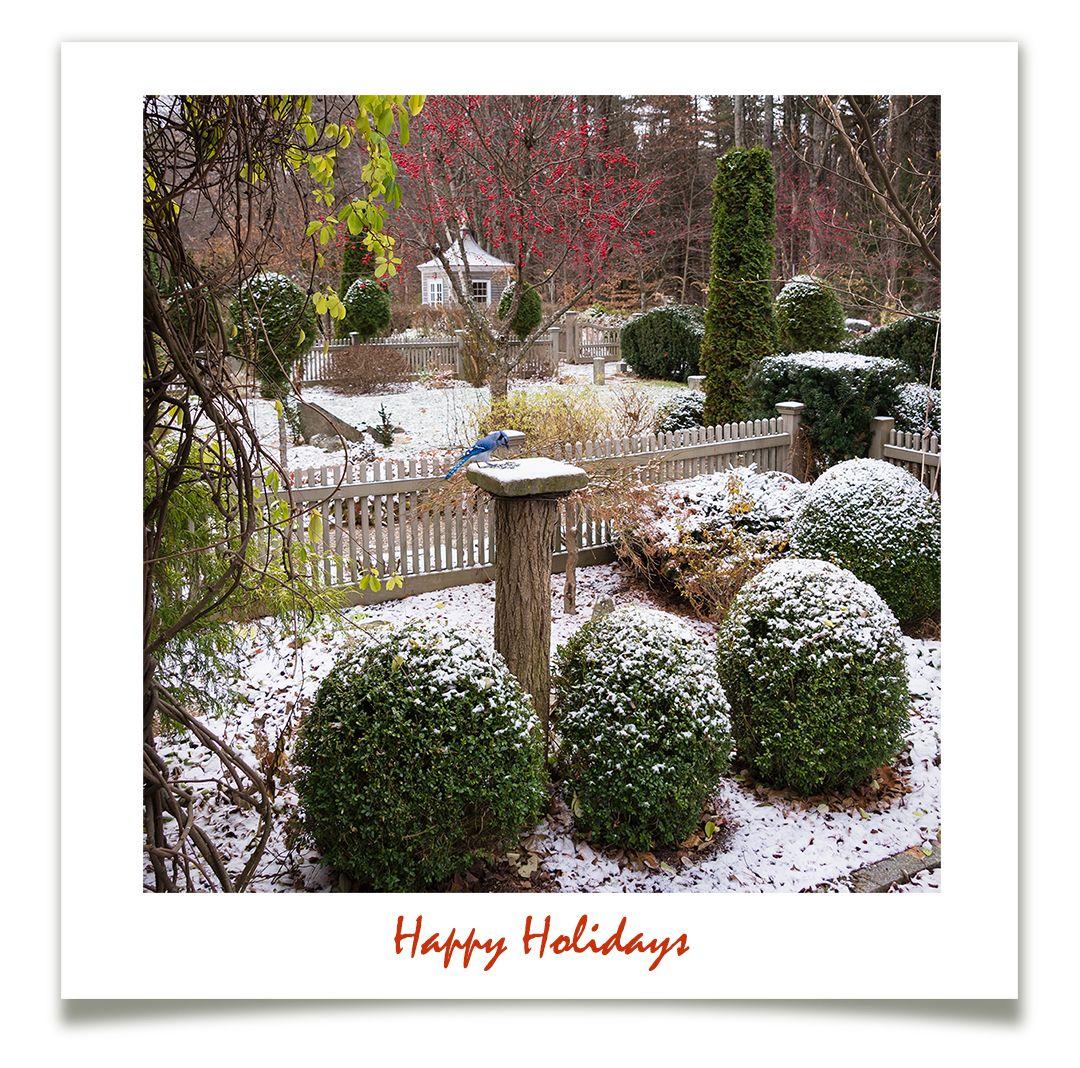 Happy Holidays!   Winter garden, Happy holidays, Outdoor ...