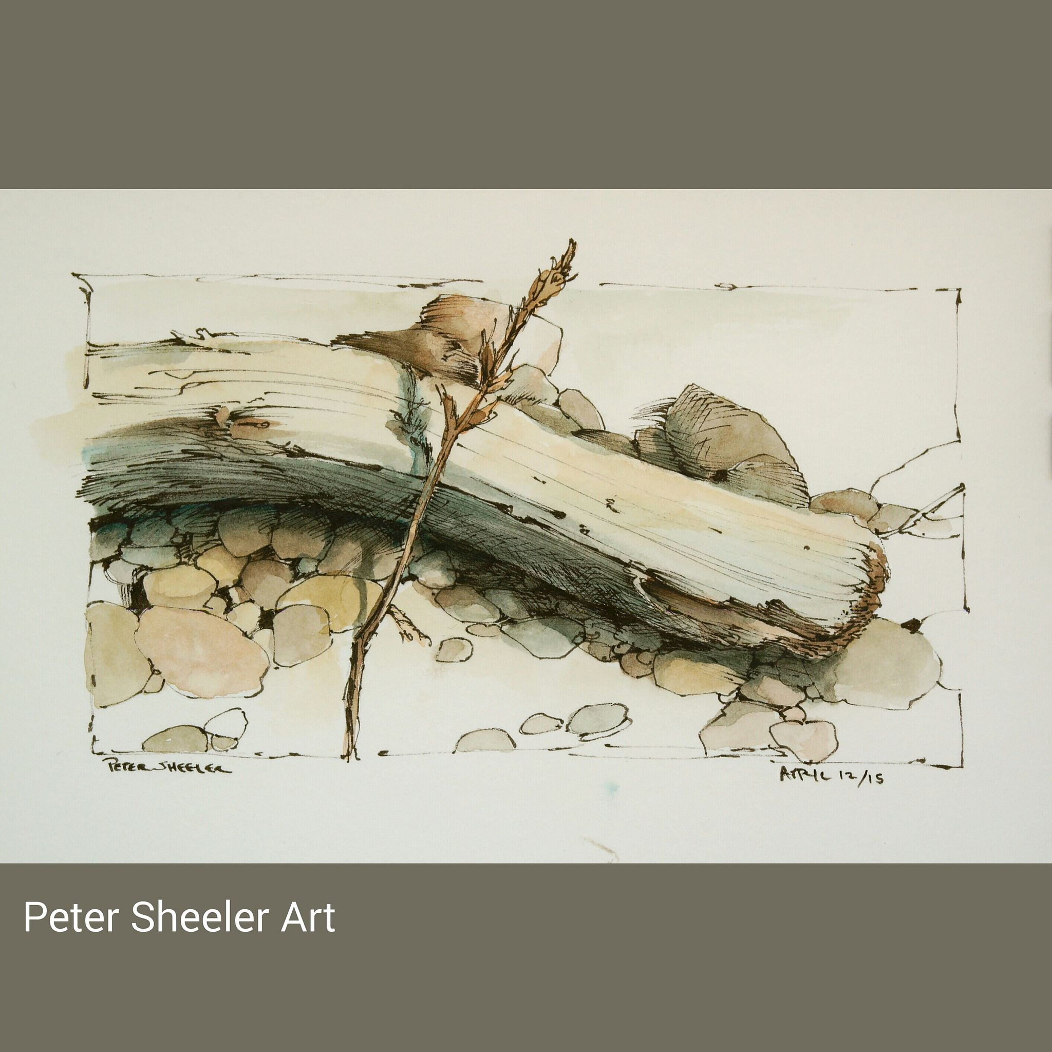 https://flic.kr/p/rP6uEn | Driftwood Sketch along the shore today. Finished…