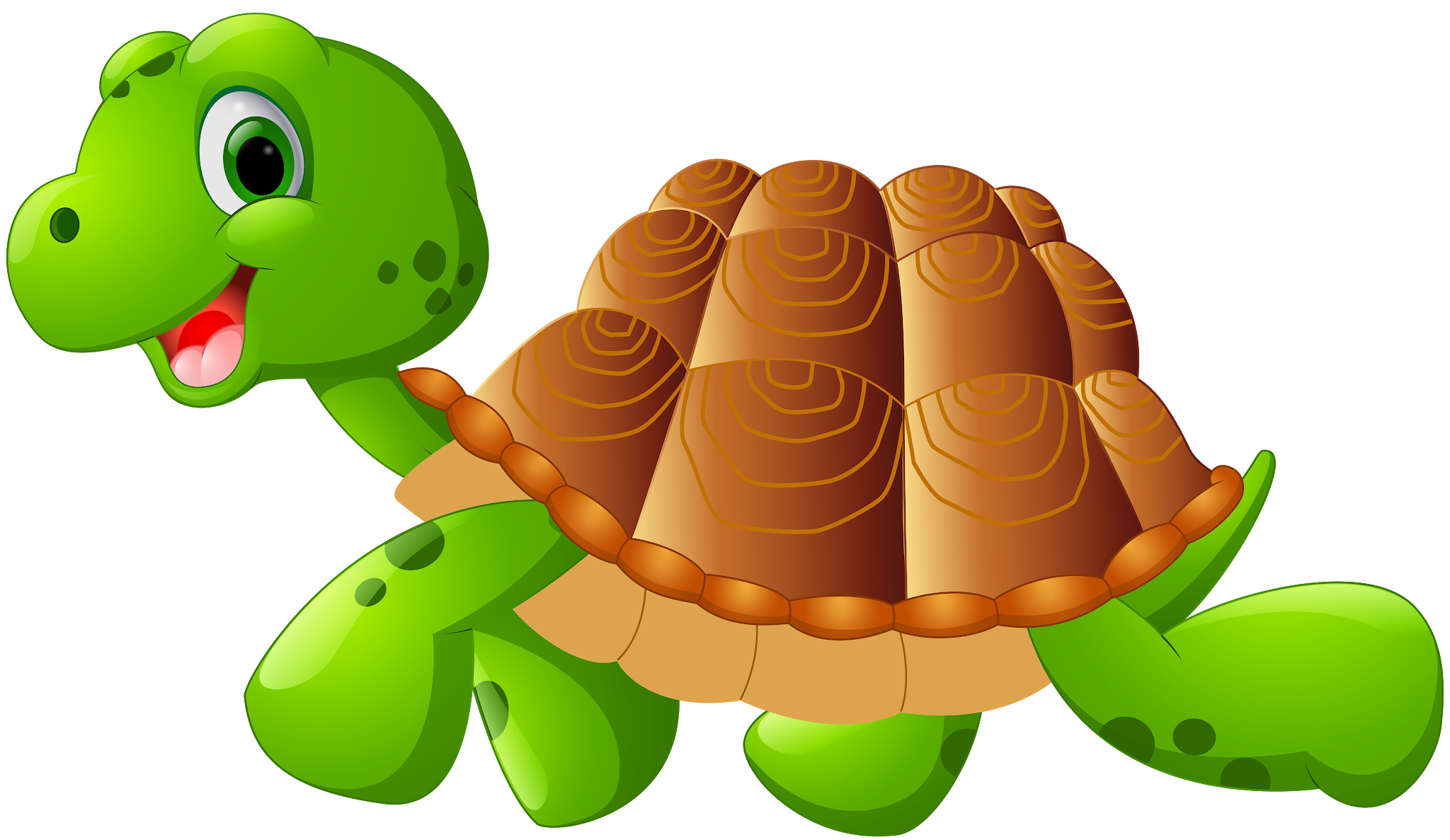 Turtle Tortoise Clip Art Turtle Png Image And Clipart Cartoons Png Clip Art Free Clip Art