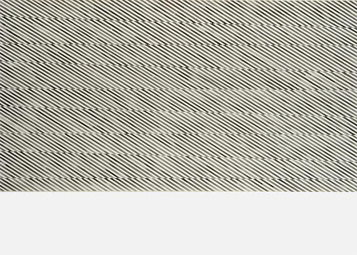 NATALIA CACCHIARELLI-Sequencia Grey-2008