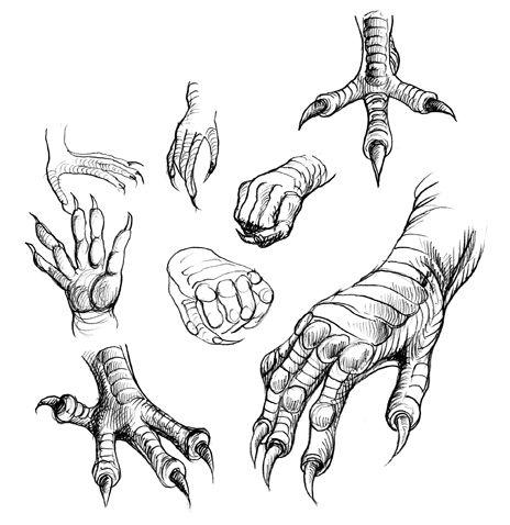 dragon claw tattoo | More Dragon Claws