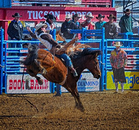 Tucson Rodeo 2013 Final_20130224_0051