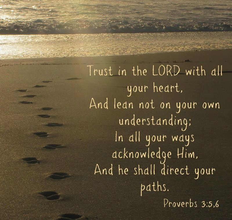 Daily Bible Quotes Text: A Very Comforting Bible Text