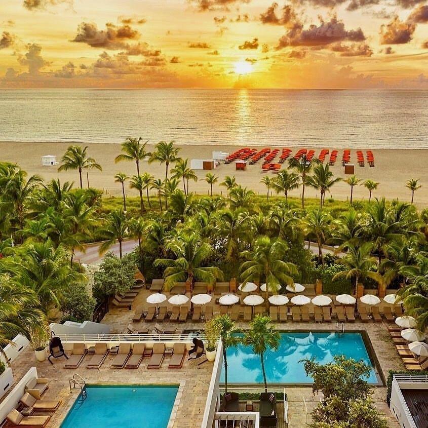 Royal Palm South Beach Miami By Joan S