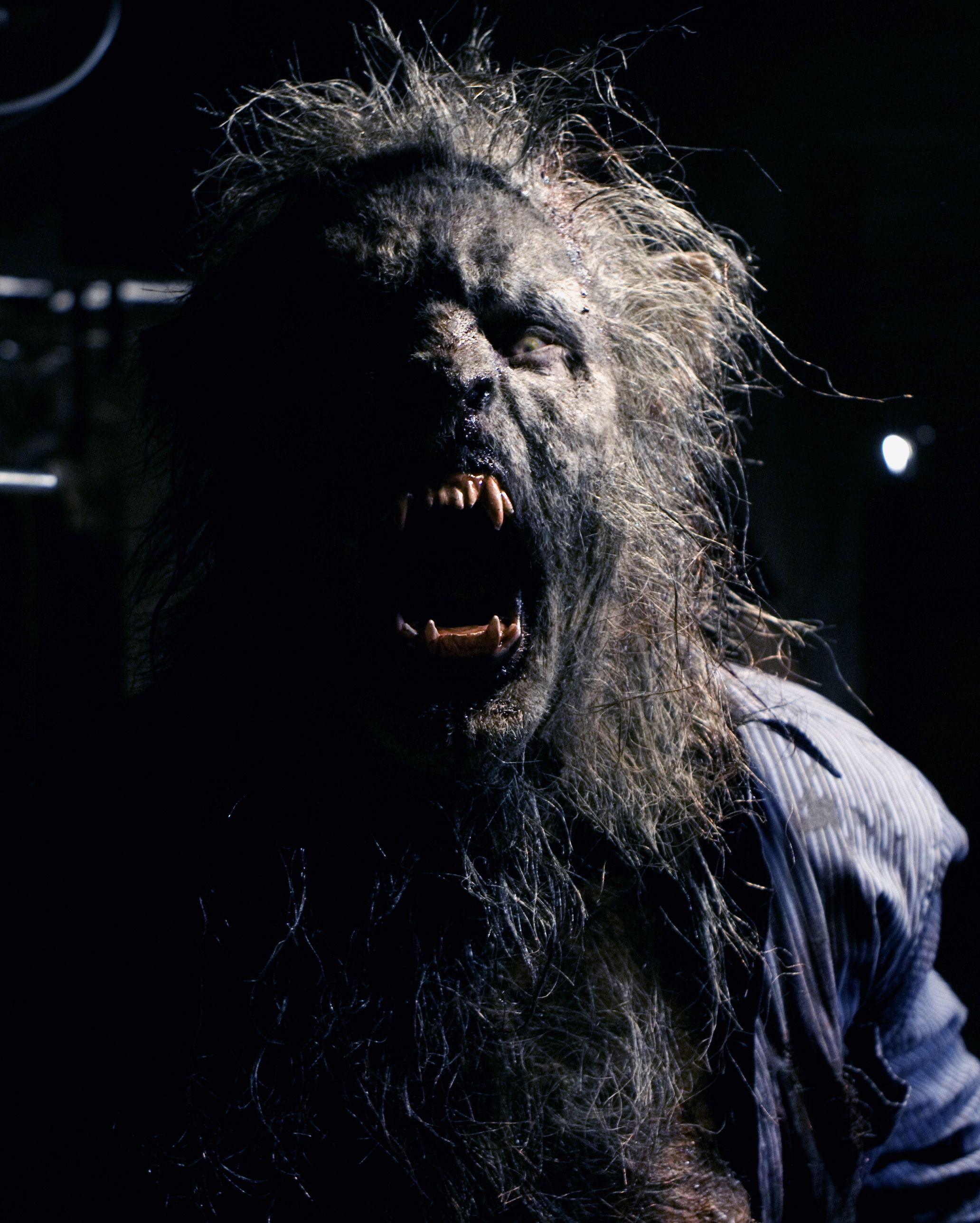Bad moon rising steve boyle fx werewolf werewolf art