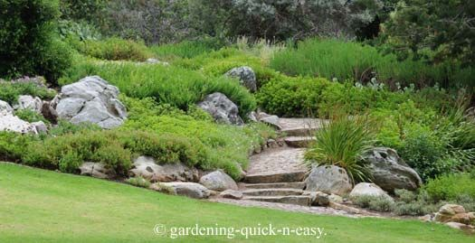 Ordinaire Image Detail For  Rock Garden Designs   A Practical Guide