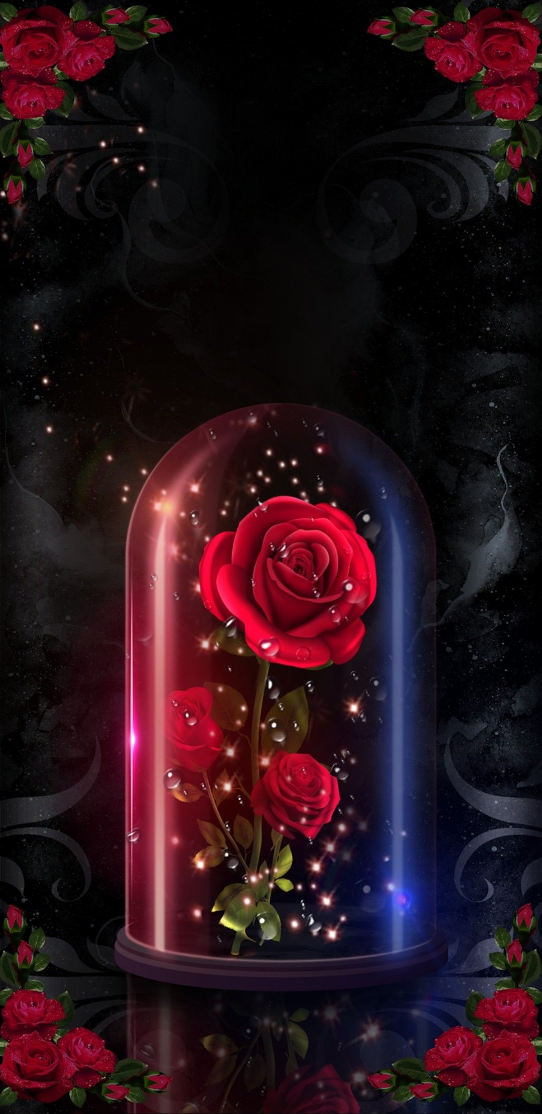 Pin By Emi Rey Siguenza On Roses Wallpaper 2 Rose Flower Wallpaper Flower Phone Wallpaper Flower Wallpaper Enchanted rose wallpaper beauty and