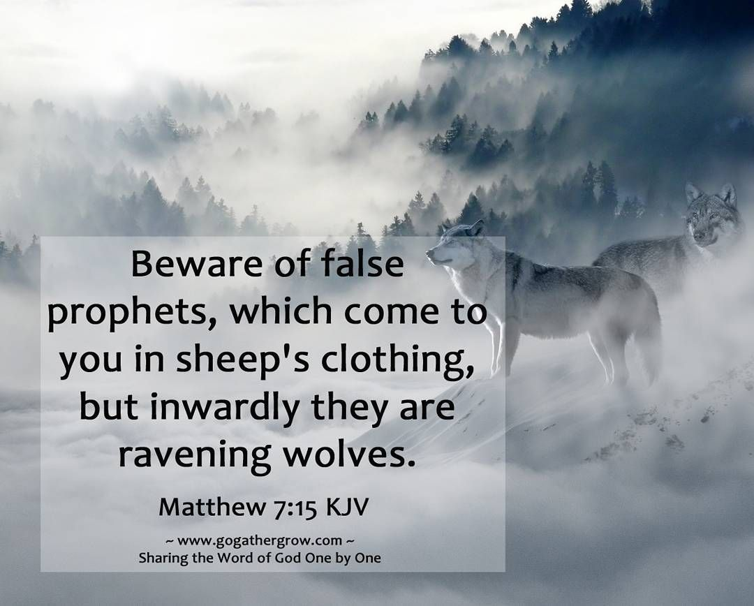 Though there are wolves all around us, He does send us as sheep in the midst of wolves so be wise as serpents and harmless as doves. Above all, remember that it is not you who speaks but the Spirit who speaks through you. Matthew 10:16 & 20 #faithquotes http://quotags.net/ipost/1499105729263808993/?code=BTN5LfZhbHh