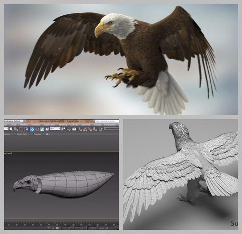 Watch 3D artist Missset create an American bald eagle model in 3ds
