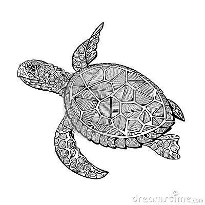 Resultado de imagen para tortuga mandala