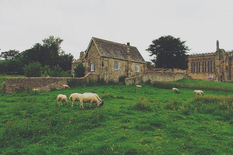 Bolton Abbey, Addingham, UK