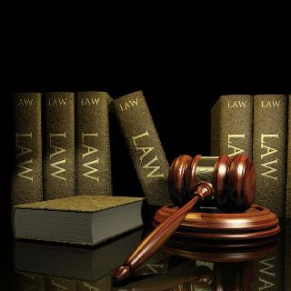 Very Important Law Books Indeed Business Law Criminal