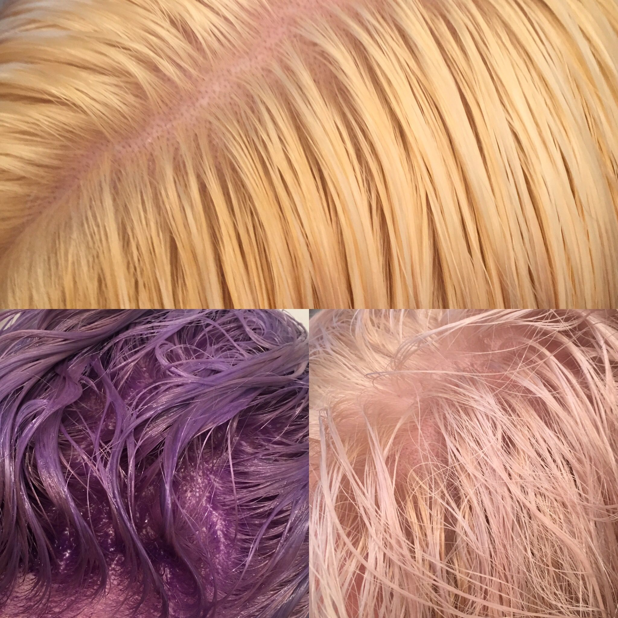 Bleached Roots Applied Wella T18 Toner Waited Until Dark Purple