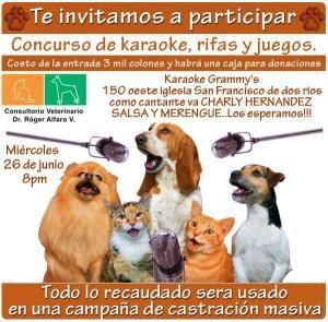 Karaoke para perritos y gatos de la callehttp://www.desktopcostarica.com/eventos/2013/karaoke-para-perritos-y-gatos-de-la-calle