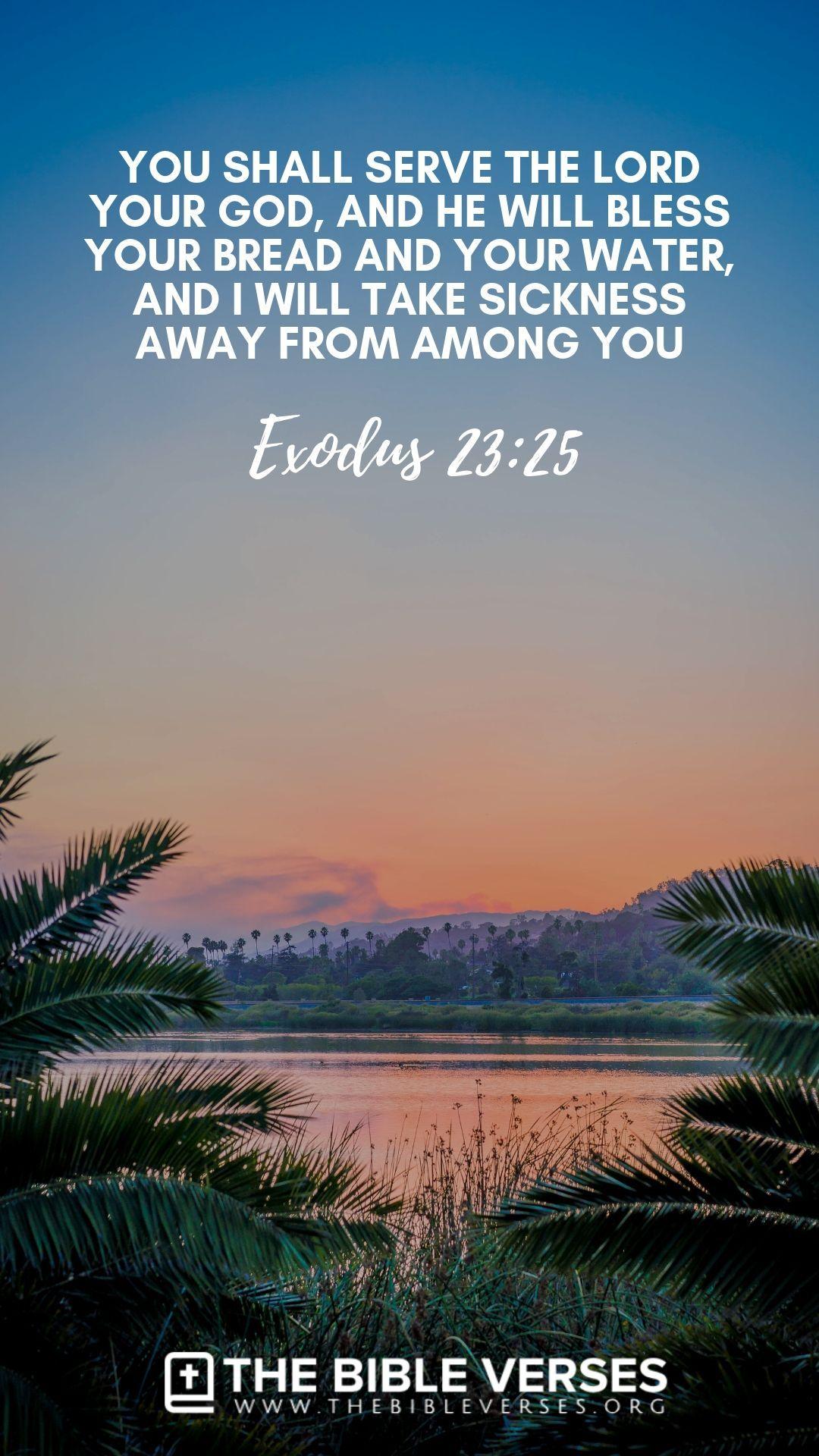 Bible Verses About Healing Illness