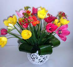 Imagini Pentru Flori De Primavara Plants Garden