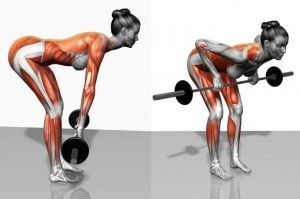 Proper form for Bent over barbell row | BACK | Pinterest | Barbell row