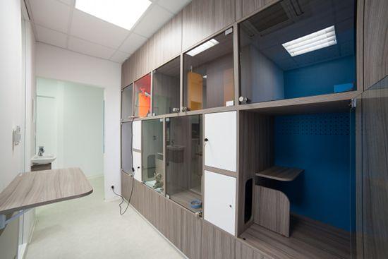 Albums De Photos Veterinaire Clinique Veterinaire Mobilier De Salon
