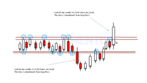 Advanced forex price action course