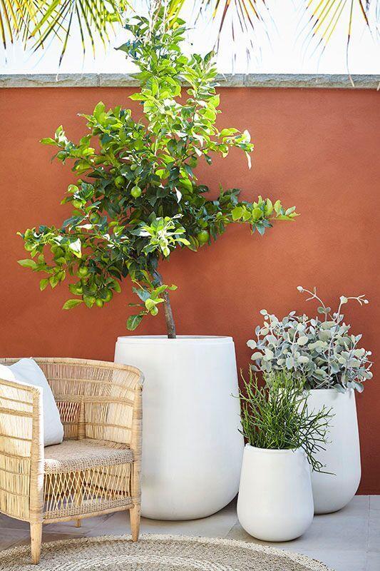 Moderno / ARD Gavitella Grey   Deco terrasse exterieure ...