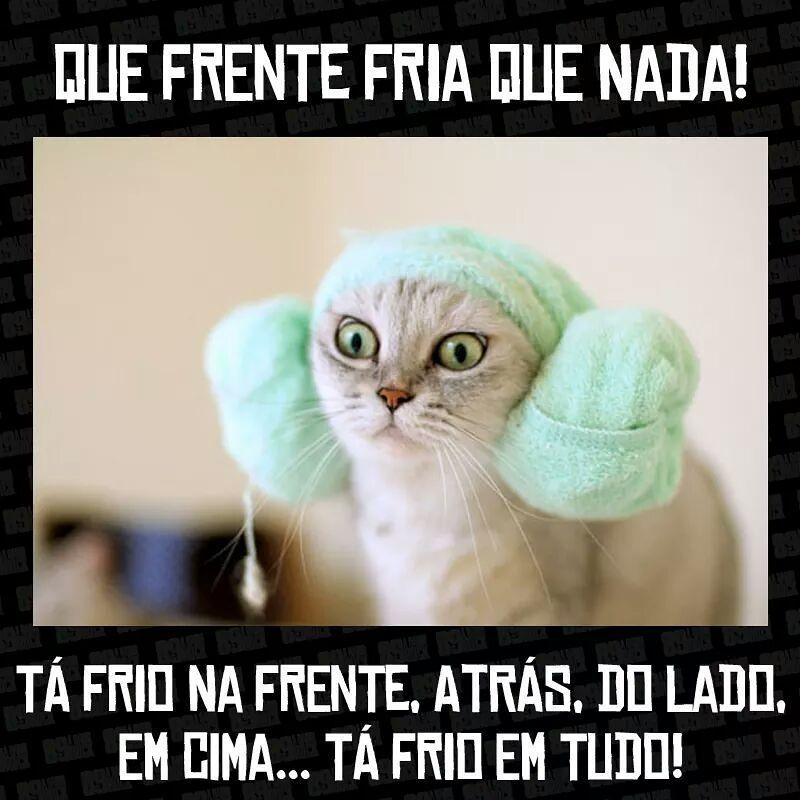 Tá Frio Em Tudo Frases Humor Funny E Memes