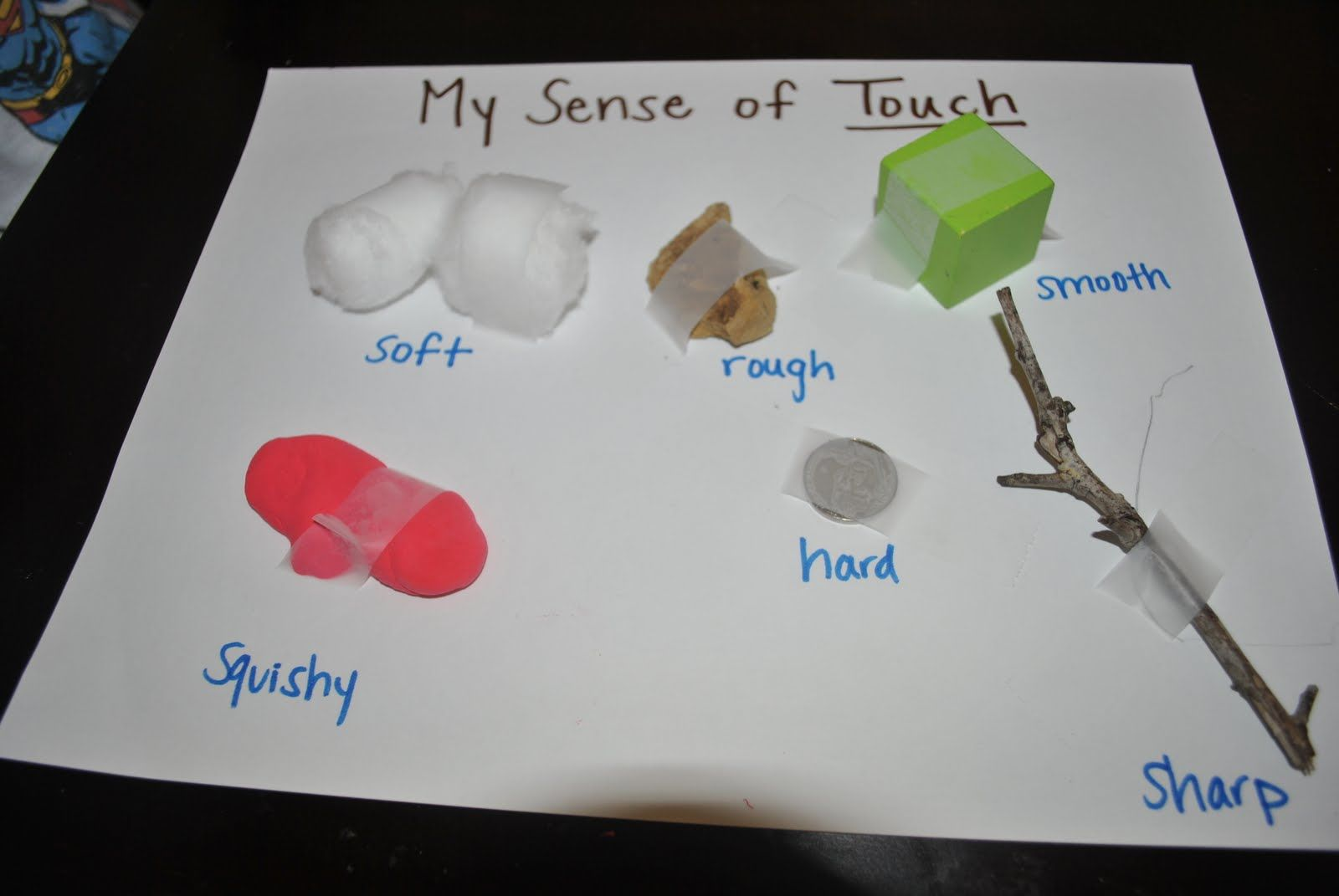 Five Senses Touch Poster How Much Would This Be Paired