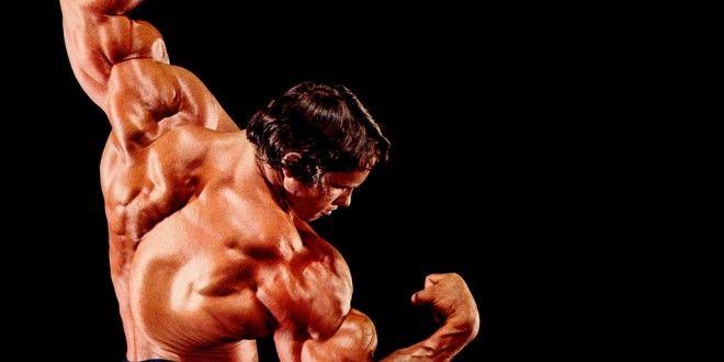 Arnold Schwarzenegger Wallpapers Wallpapers Top 10 Arnold
