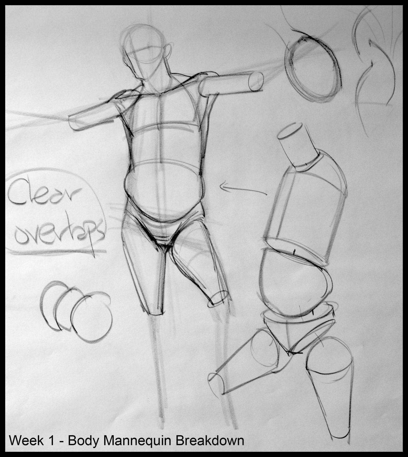 Analytical Figure Drawing SP08: Week 1 - Process Breakdown Demo ...