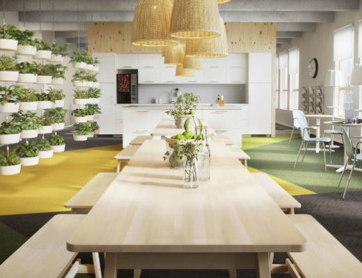 An office lunch room furnished with tables and benches in white stained solid birch. IKEA NORIKER $159 Table