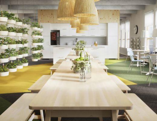 Office Furniture Ikea Business Office Break Room Lunch Room