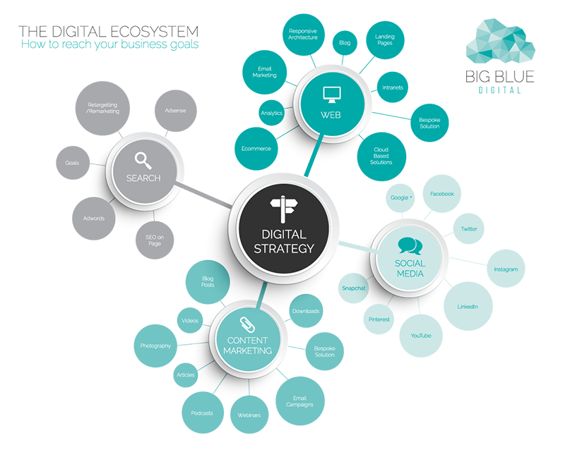 The Digital Ecosystem With Images Ecosystems Mind Map