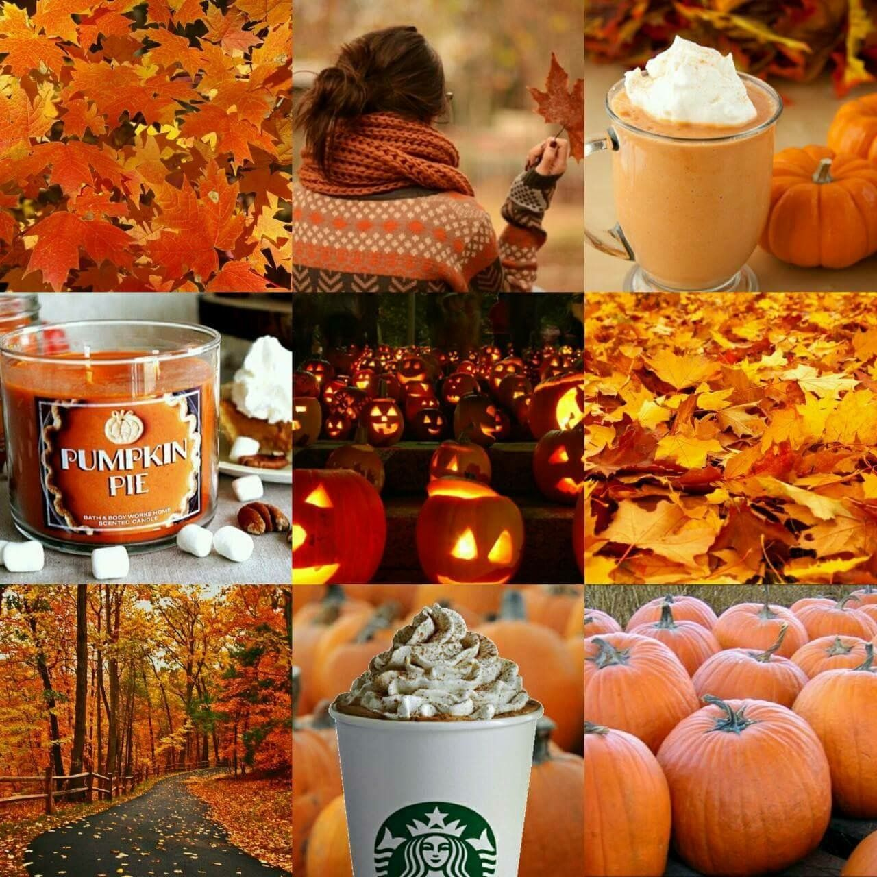 Pin By Lexi Lambert On Autumn Autumn Aesthetic Tumblr Autumn Aesthetic Fall Wallpaper
