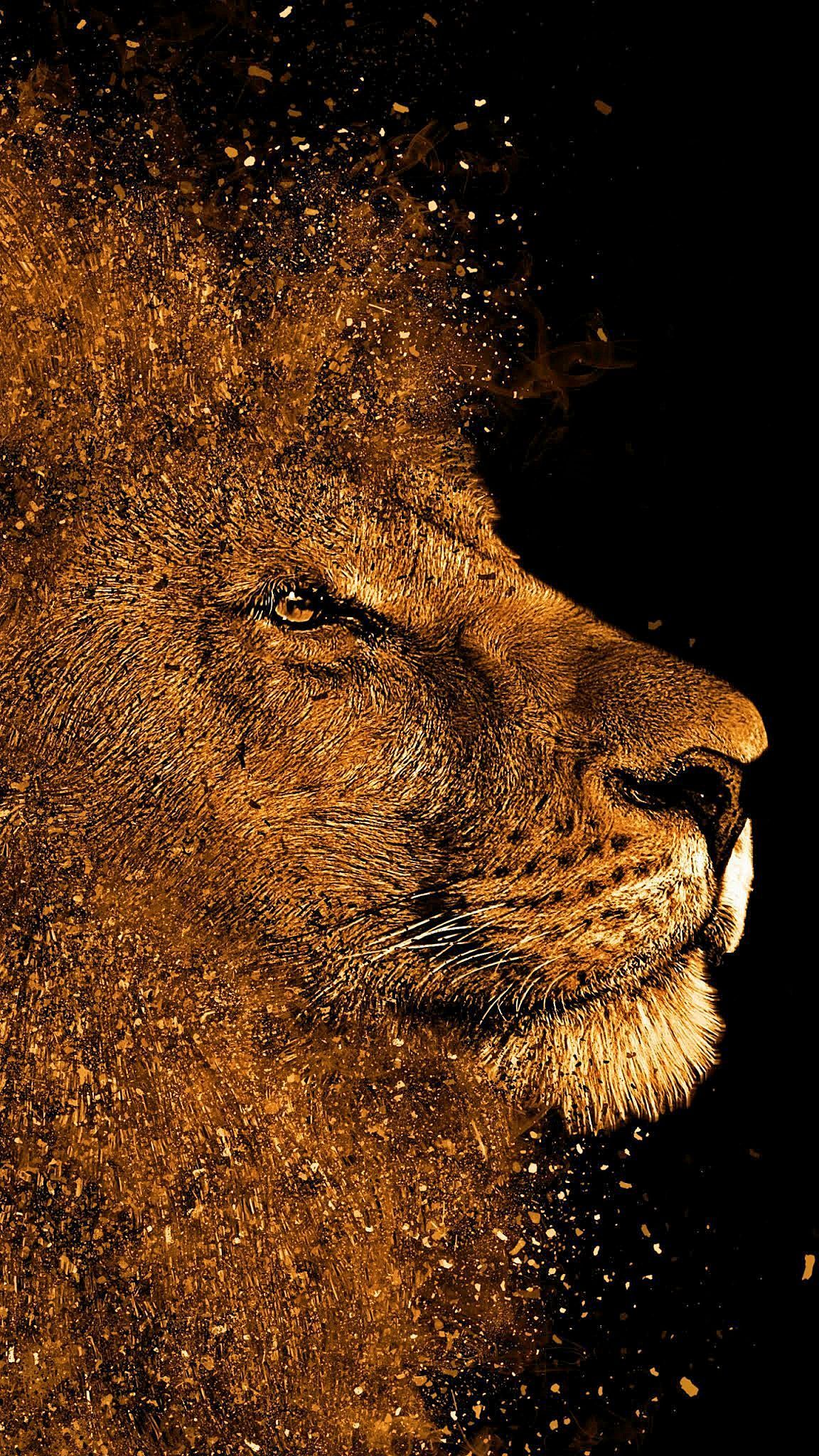 Pin on live wallpaper iphone in 2020 Lion painting, Lion