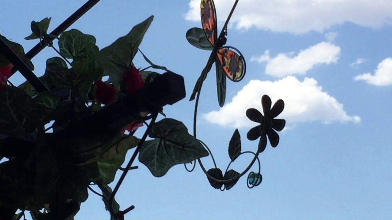 2017 was a HOT HOT HOT Summer Dee's Hummingbird Paradise