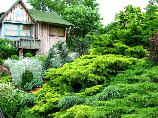 Landscaping ideas for slopes this is how the stairs look for Garden designs for slopes