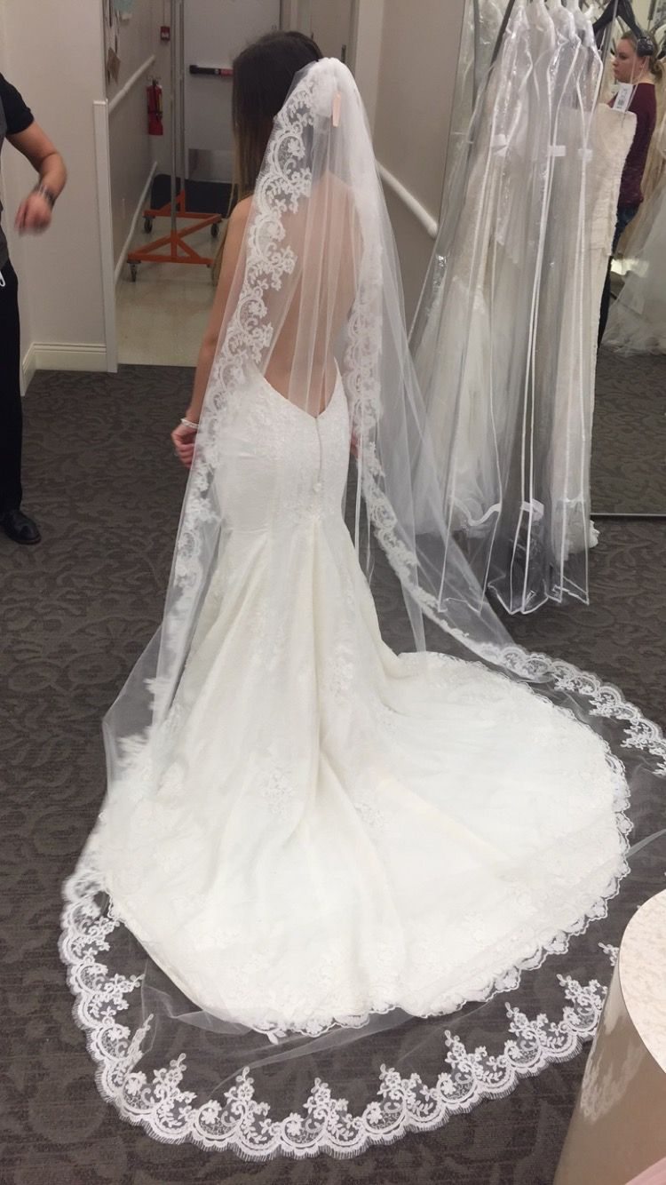 Couture wedding dress with a dramatic cathedral veil