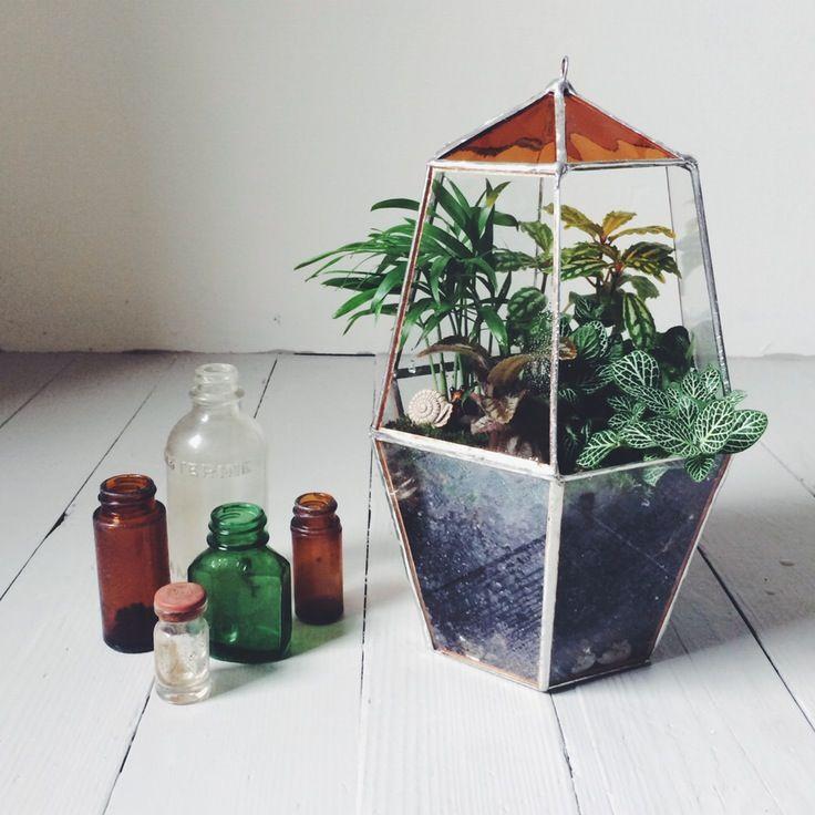 ABJ Glassworks Favas Terrarium