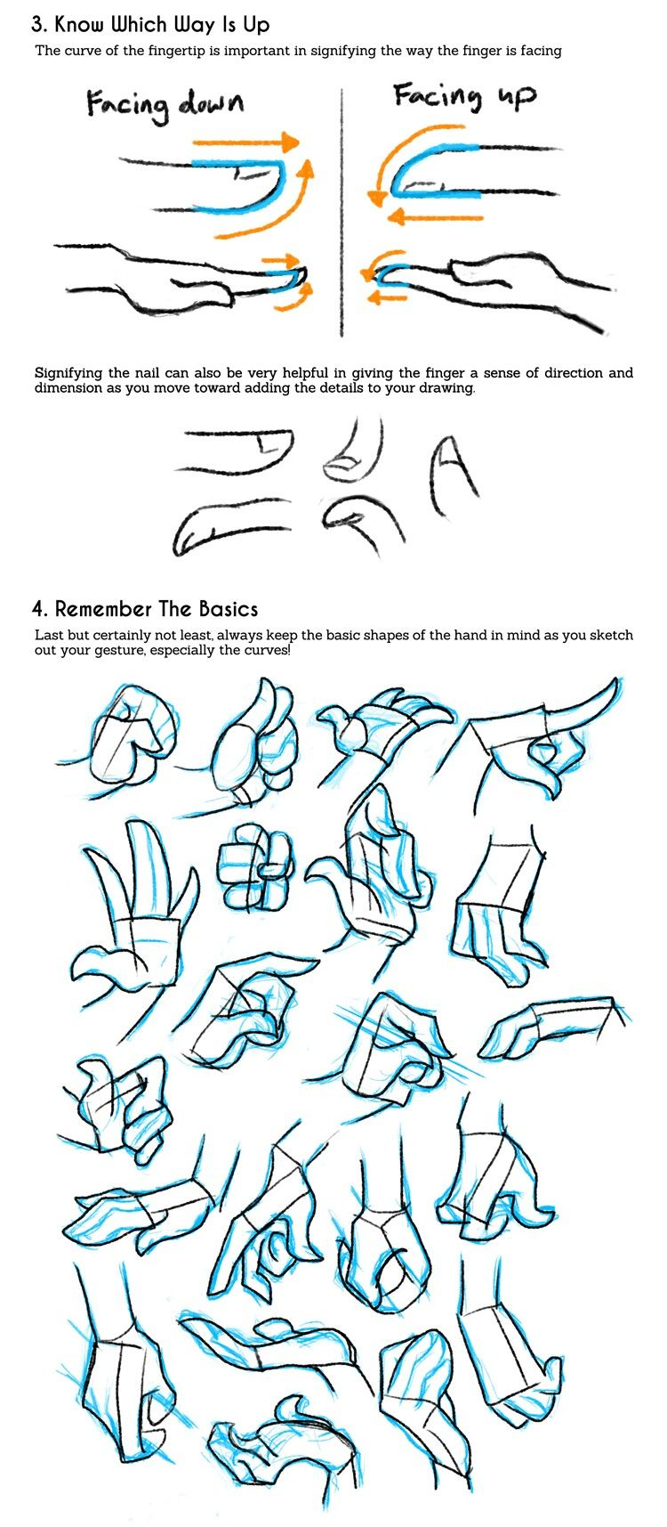 Dedos manos | Dibujos | Pinterest | Anatomía, Dibujo y Dibujar